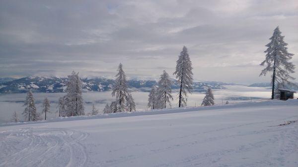 OBST Schnee